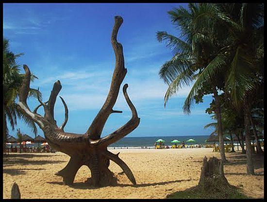 g_escultura-de-raiz-na-praia-de-guaibim-ba-fotocrioulla-oliveira